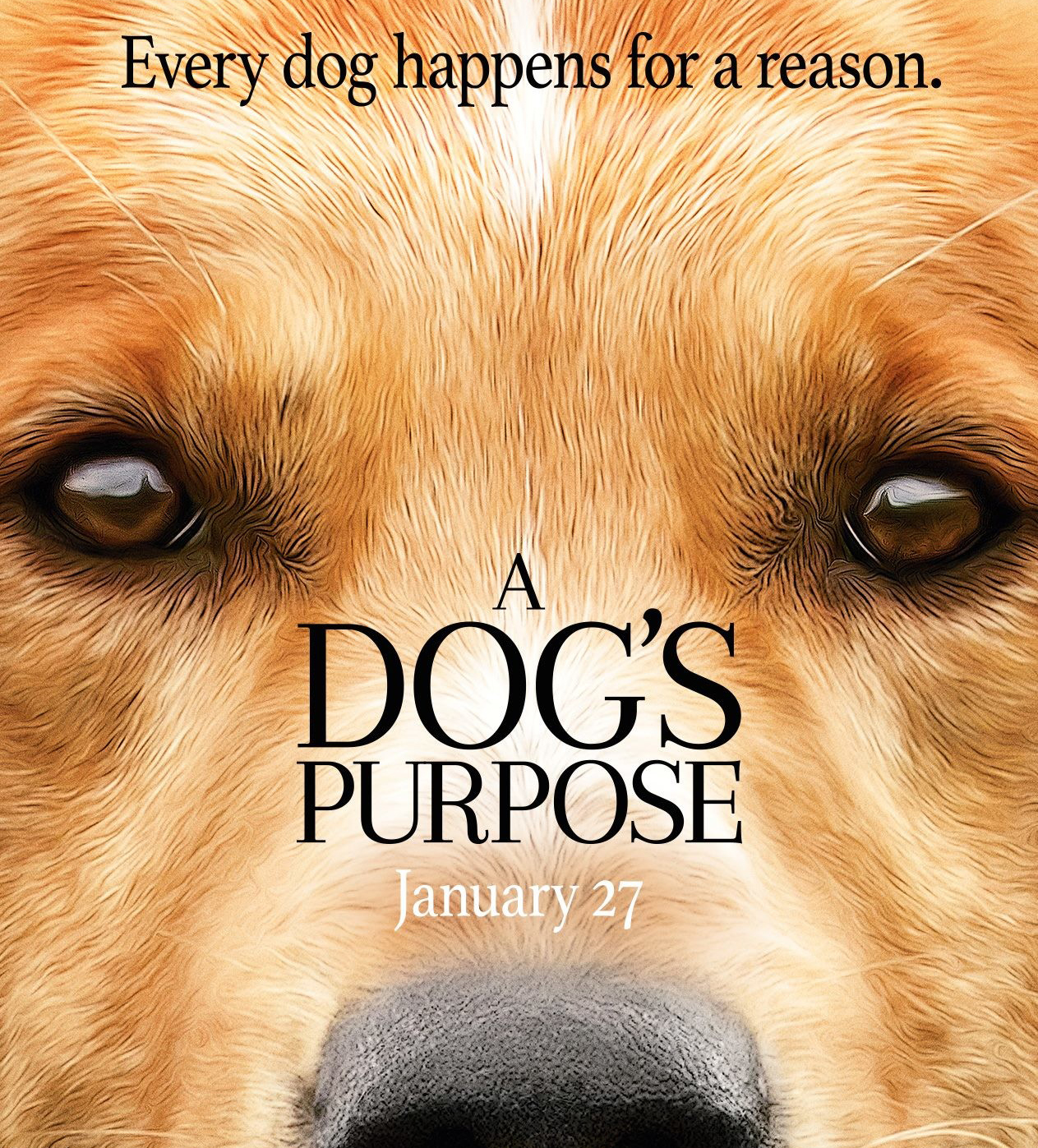 a dogs purpose cartel pelicula